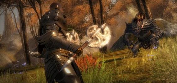 Воин в Guild Wars 2